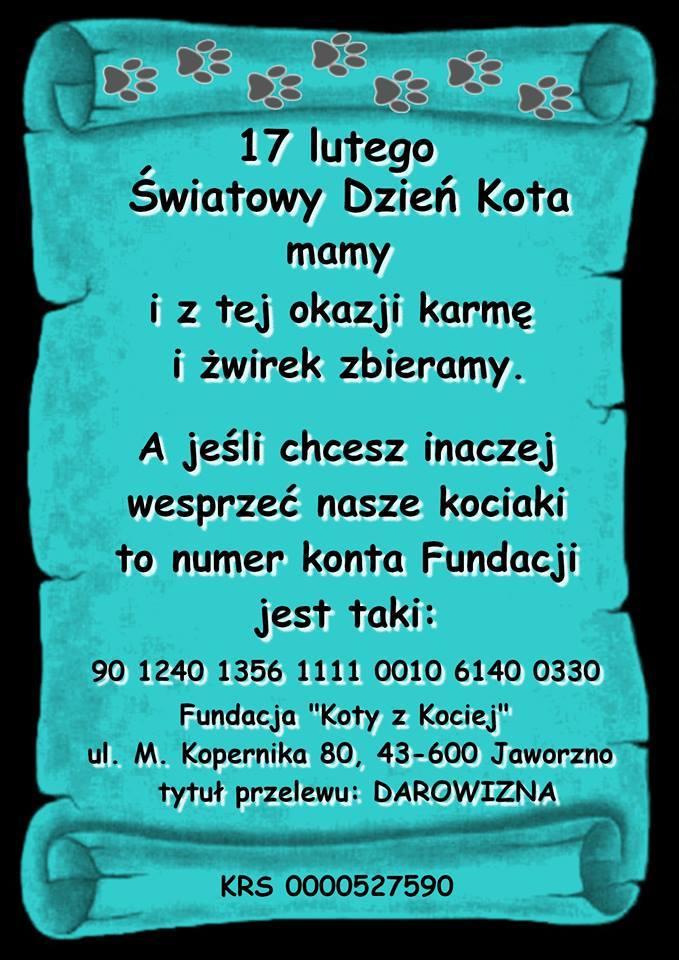 12721712_766661453466983_284402414_n